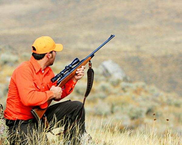 куплю охотничье ружье ТОЗ 34 беларусь